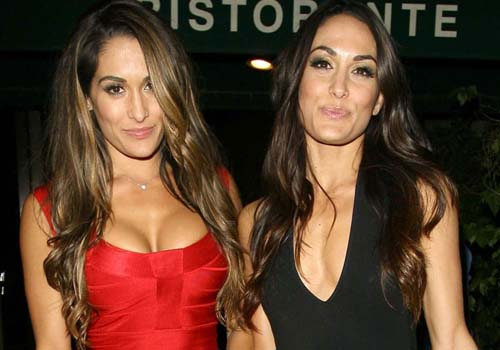 Nikki Bella Plastic Surgery, Before And After Boob Job Picture-7085